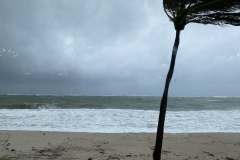 Streaming LIVE  from The Pelican Grand Beach Resort during a hurricane warning!